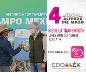 Banner Edomex 1